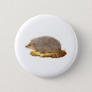 Woodland Hedgehog 6 Cm Round Badge
