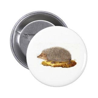 Woodland Hedgehog 6 Cm Round Badge