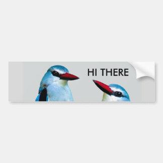 Woodland Kingfisher birds Bumper Sticker