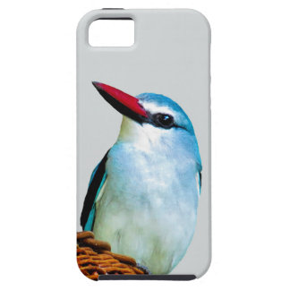Woodland Kingfisher birds iPhone 5 Covers