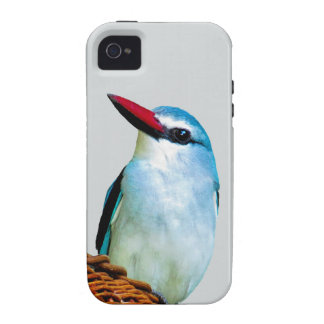 Woodland Kingfisher birds iPhone 4/4S Covers