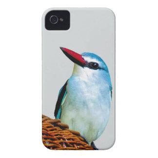 Woodland Kingfisher birds iPhone 4 Cases