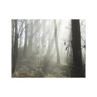 Woodland Morning Mist Canvas Print