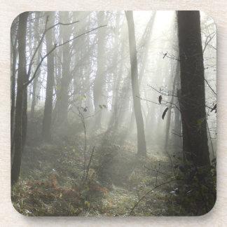 Woodland Morning Mist Hard Plastic Coasters