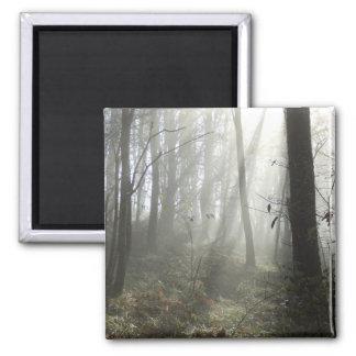 Woodland Morning Mist Square Magnet