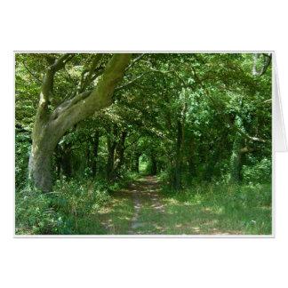 Woodland Path Card