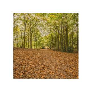 """Woodland path"" design wall art"