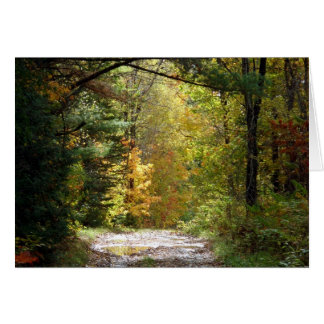Woodland path notecard