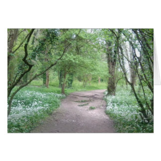 Woodland Path Photo Greeting Card