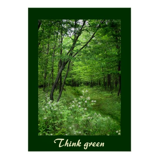 Woodland Path Think Green