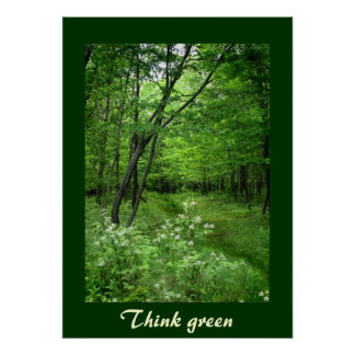 Woodland Path Think Green Posters