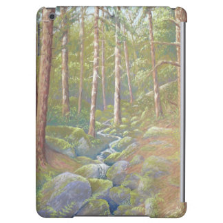 Woodland Stream, Peak District iPad Air Case
