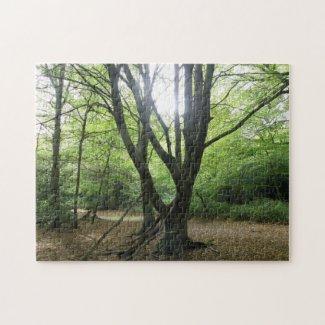 Woodland Sunshine Puzzle