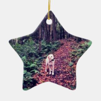 Woodland Walk Christmas Ornament