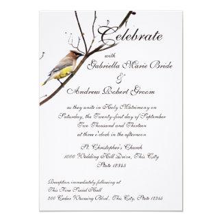 Woodland Waxwing 13 Cm X 18 Cm Invitation Card