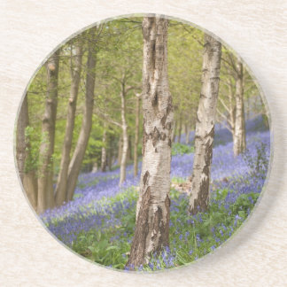 Woodlands Coaster