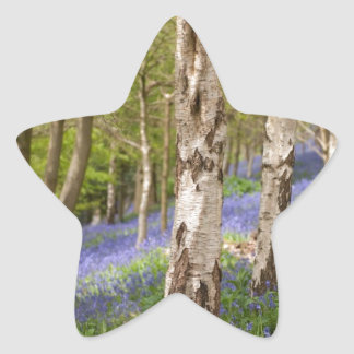 Woodlands Star Sticker