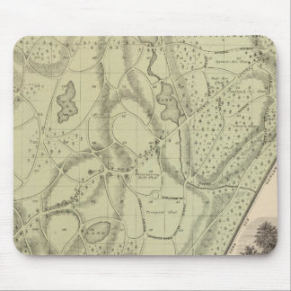 Woodlawn Cemetery Mouse Mat