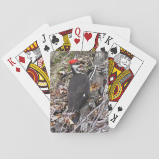 Woodpecker Bird Playing Cards