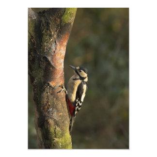 Woodpecker Invitation