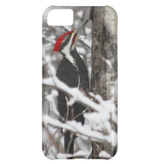 Woodpecker - iPhone 5 Case