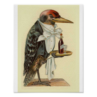 Woodpecker Waiter Vintage Bird Illustration Poster