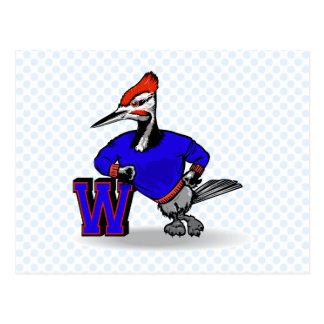 Woodrow Woodpecker Postcard