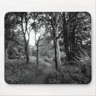 Woods Bute Park, Cardiff Mouse Pad