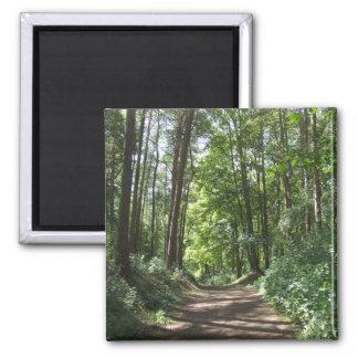 Woods Magnet