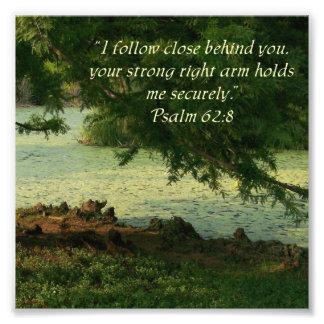 Woods Psalm 62:8 Psalm 62:8 Photo Print