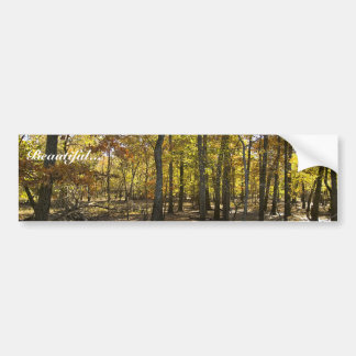 Woods with standing water bumper sticker