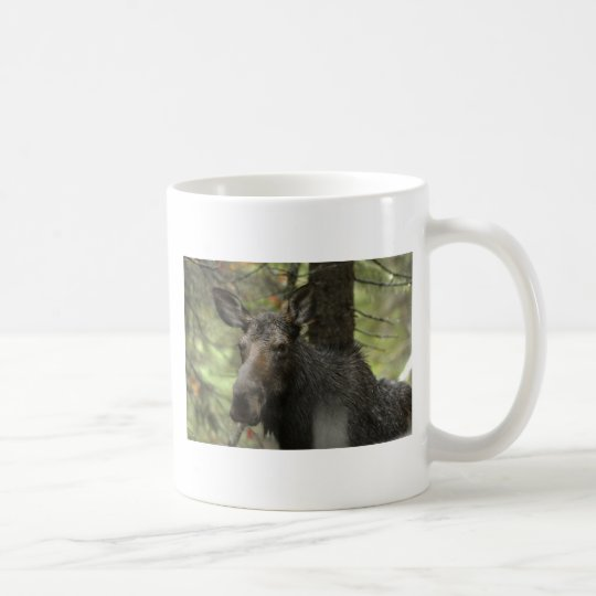 Woodsy moose mug