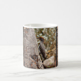 Woody On Tree Coffee Cup