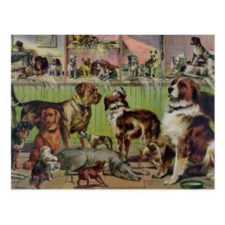 Woof! Postcard