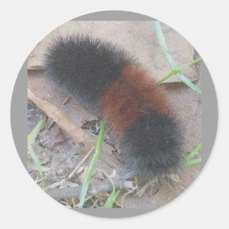 Woolly Bear Caterpillar Stickers