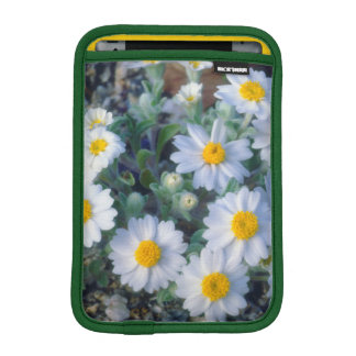 Woolly Daisy Wildflowers iPad Mini Sleeve