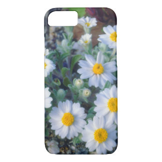 Woolly Daisy Wildflowers iPhone 8/7 Case