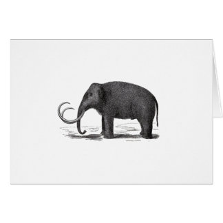 Woolly Mammoth Pre-Historic Elephant Greeting Card