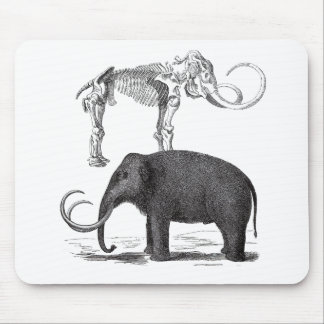 Woolly Mammoth Prehistoric Elephant and Skeleton Mouse Pads