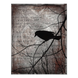 Words Of Crow Photo Print