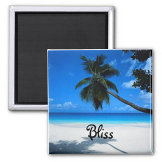 Words To Live By: Bliss Square Magnet