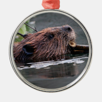 working beaver Silver-Colored round decoration