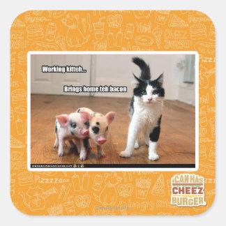 Working kitteh square sticker