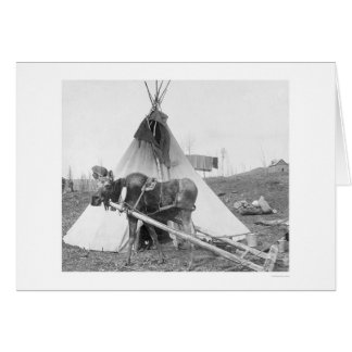 Working Moose Teepee 1916 Greeting Card