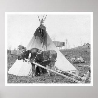Working Moose Teepee 1916 Posters