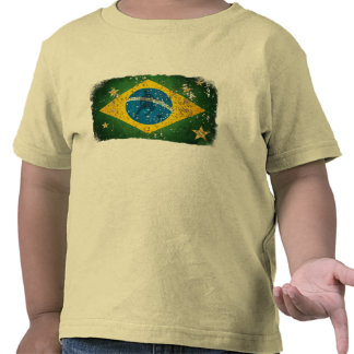 World cup Brazil 2014 world champions flag T Shirt