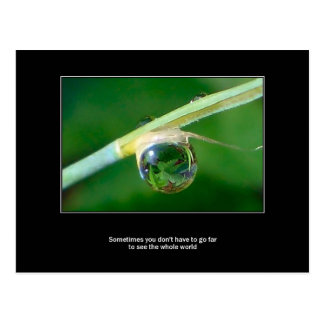 World in a droplet postcard