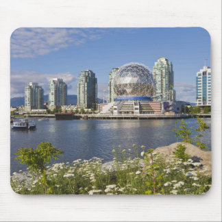 World of Science, Vancouver, British Columbia, Mouse Mat