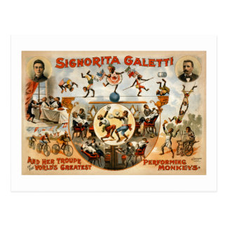 World s Greatest Performing Monkeys 1892 Post Cards