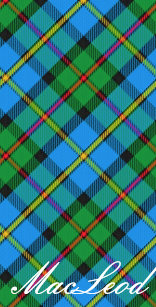 World Traveller Clan MacLeod Of Harris Tartan Passport Holder